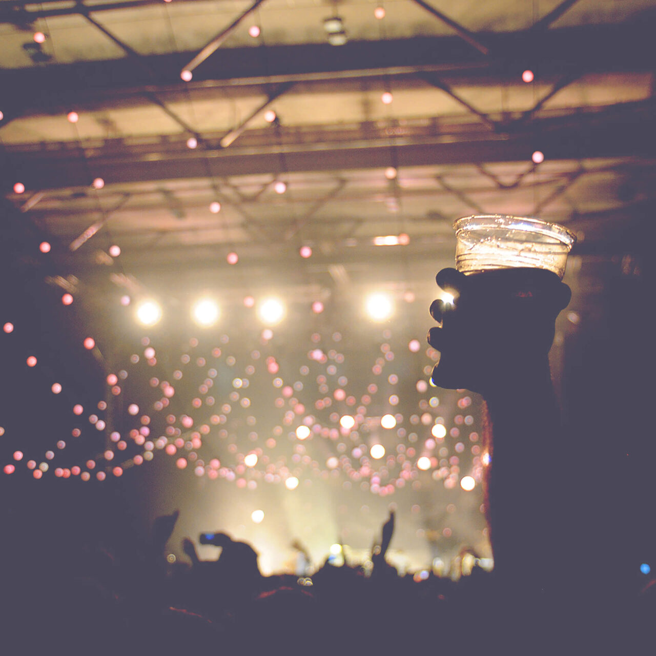 Live Music Venues and Gentlemen's Clubs 1